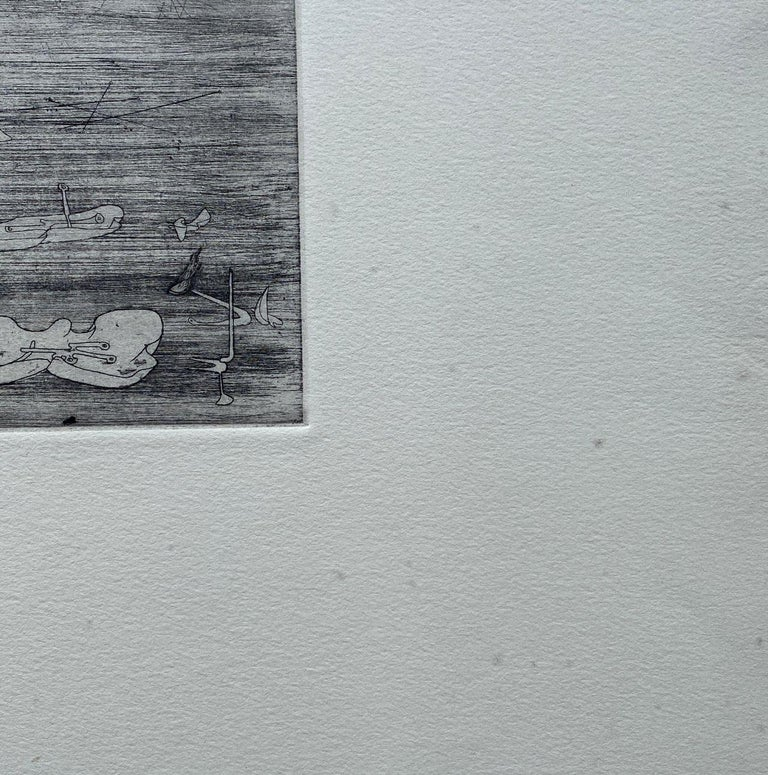 Untitled - Original Etching - Wittrock 5 For Sale 5
