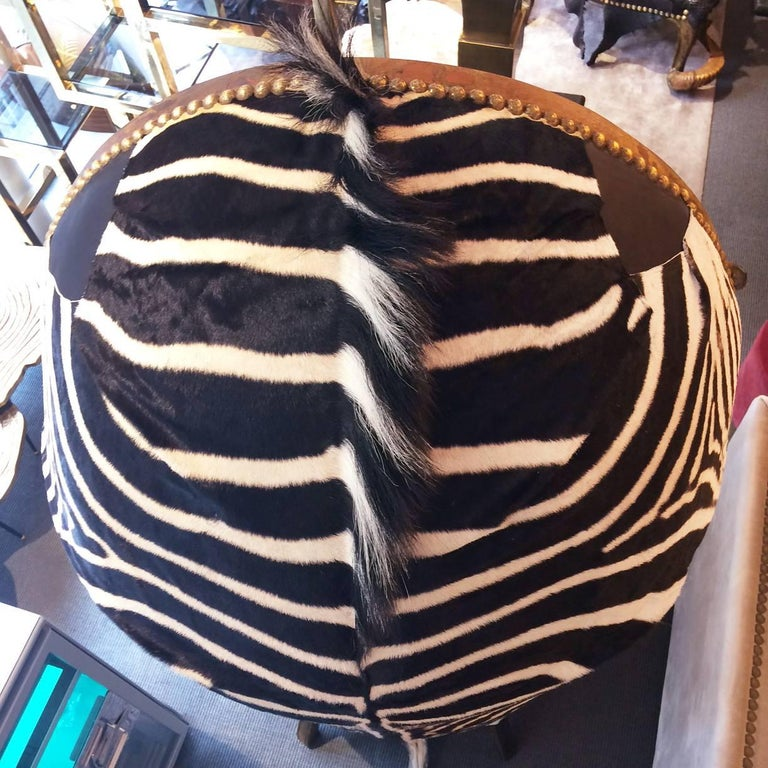 Contemporary Zebra Black Armchair Dome with Real Zebra Skin and Real Horns For Sale