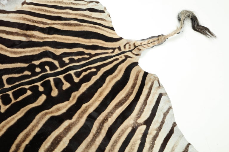 Zebra Hide Rug, Vintage In Excellent Condition For Sale In New York, NY