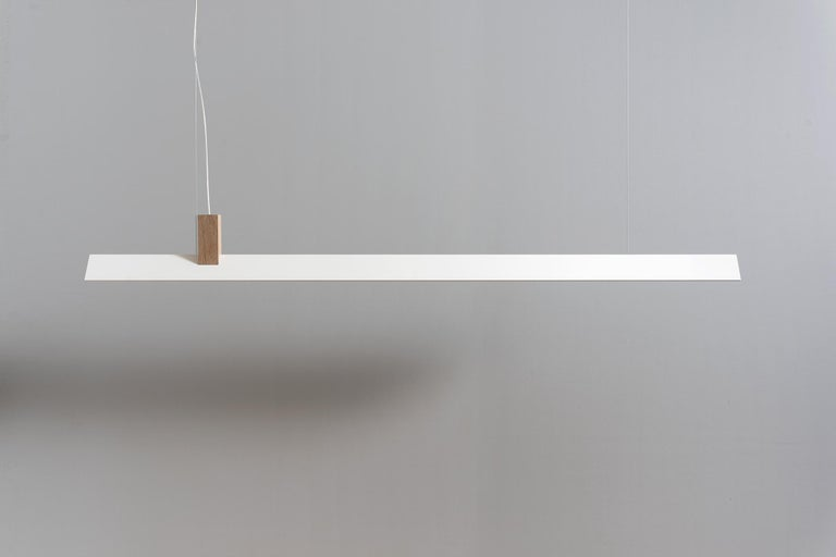 Zebra pendant by ASAF Weinbroom Studio