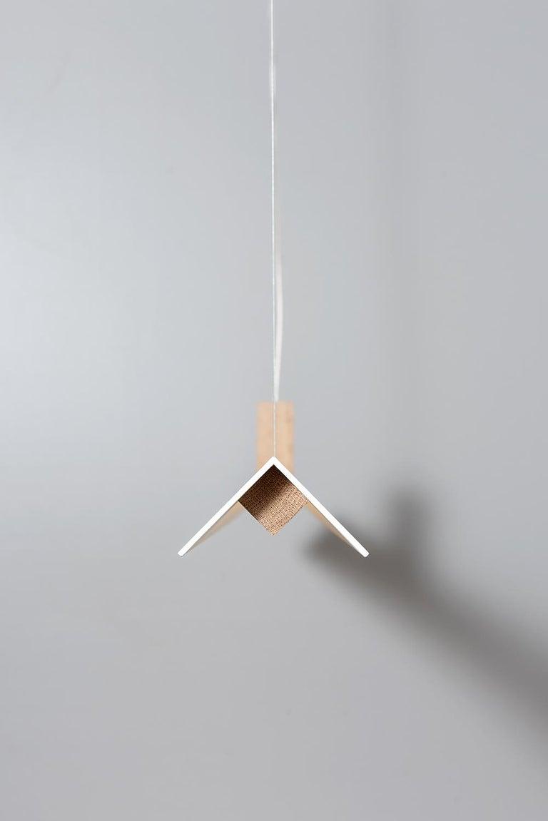 Modern Zebra Pendant by ASAF Weinbroom Studio For Sale