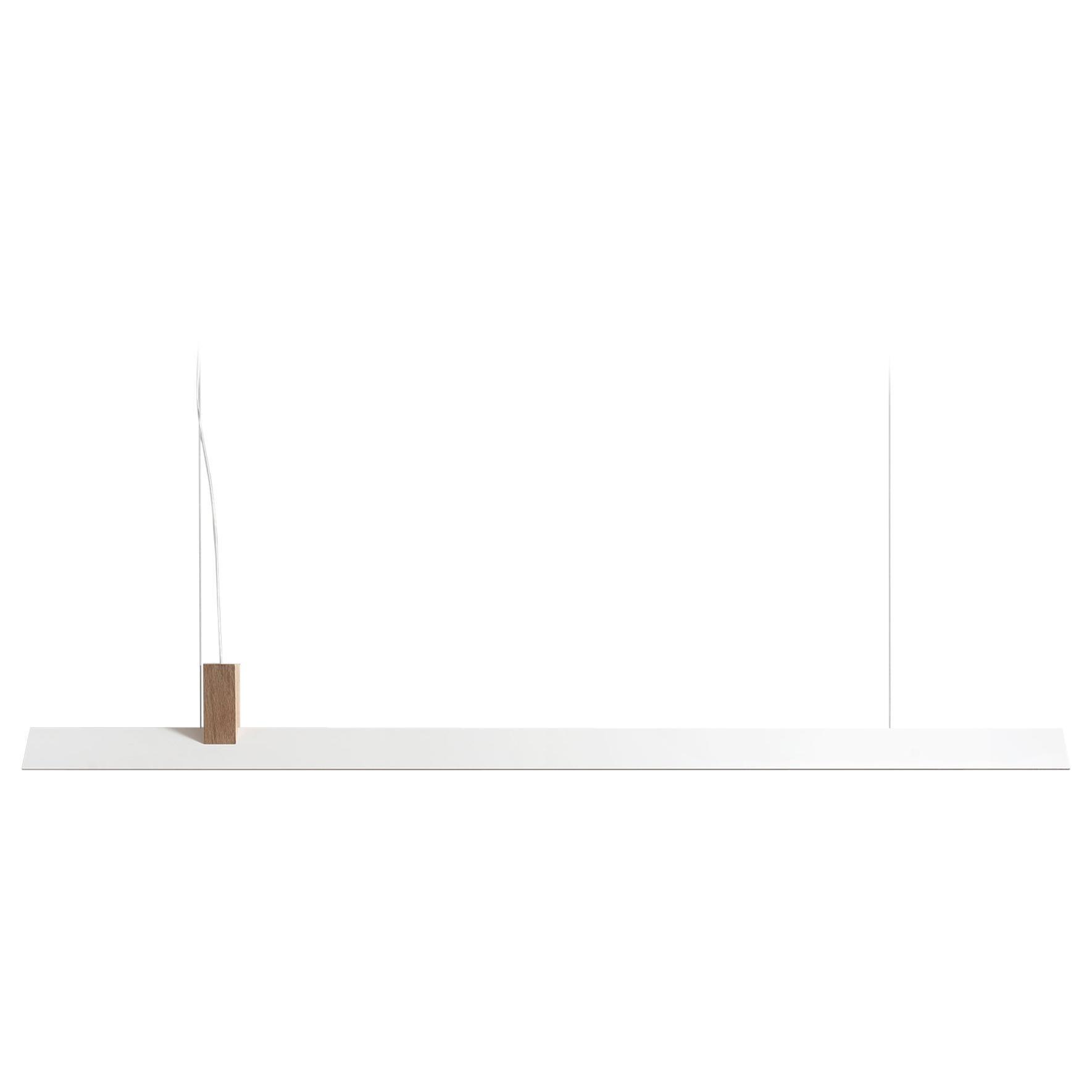 Zebra Pendant by ASAF Weinbroom Studio