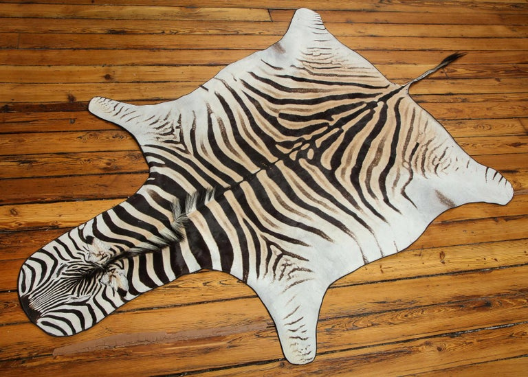 Beautiful zebra rug. This one is extra white which is very hard to find. Backed with wool and trimmed all around with leather.