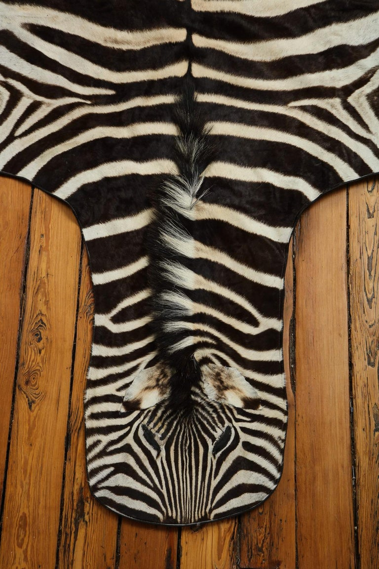 Beautiful zebra rug. This rug is extra white which is very hard to find.