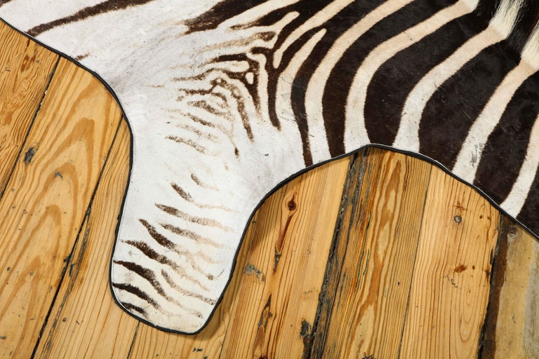 South African Zebra Rug For Sale