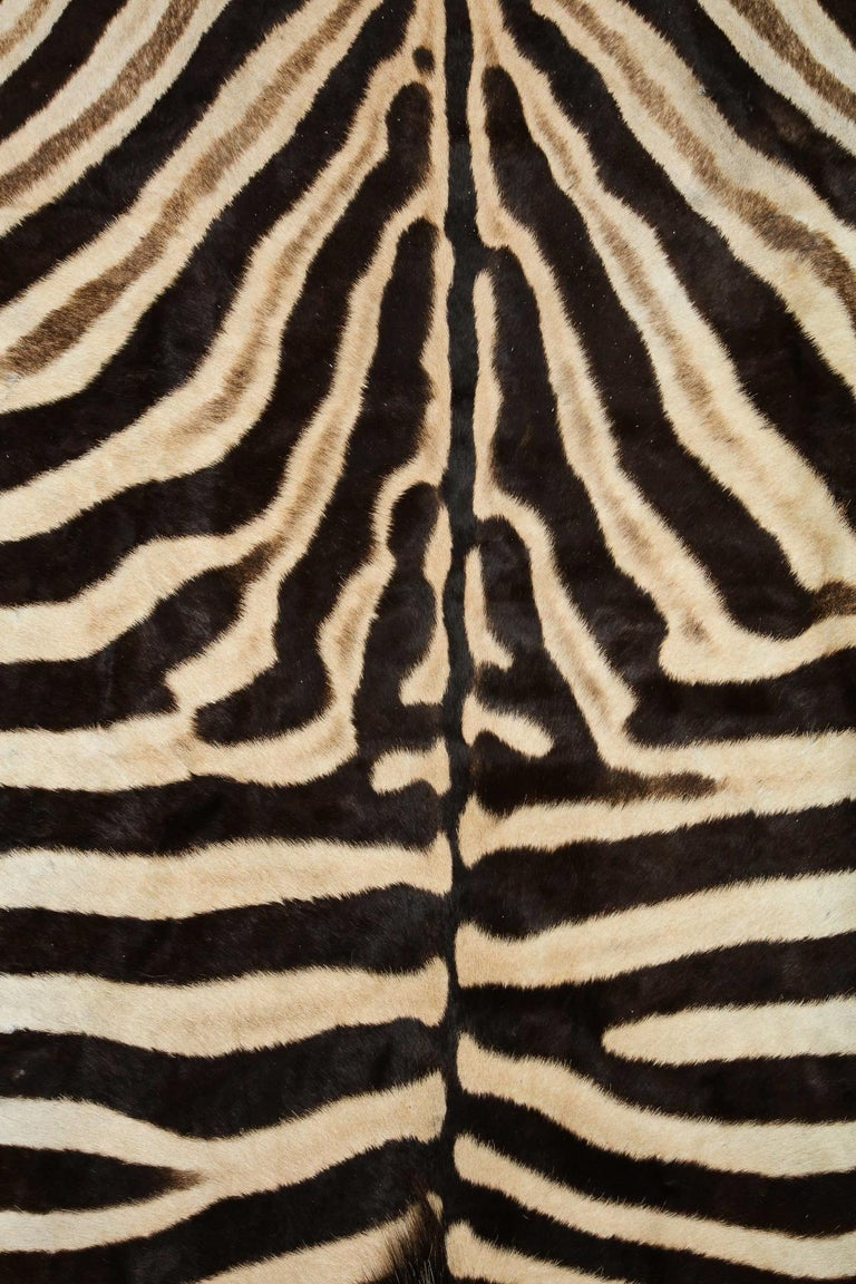 Hand-Crafted Zebra Rug For Sale
