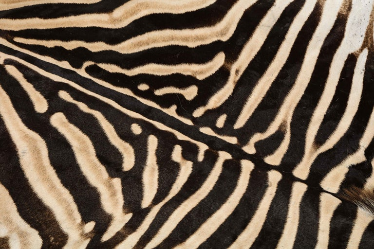 Contemporary Zebra Rug For Sale