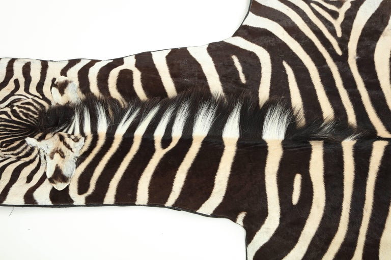 Zebra Rug For Sale 1