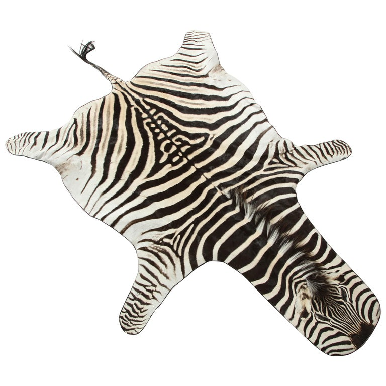 Zebra Rug For Sale