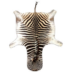 Zebra Rug, South Africa, Wool Felt Backed with Leather Trim, New Hide, In Stock