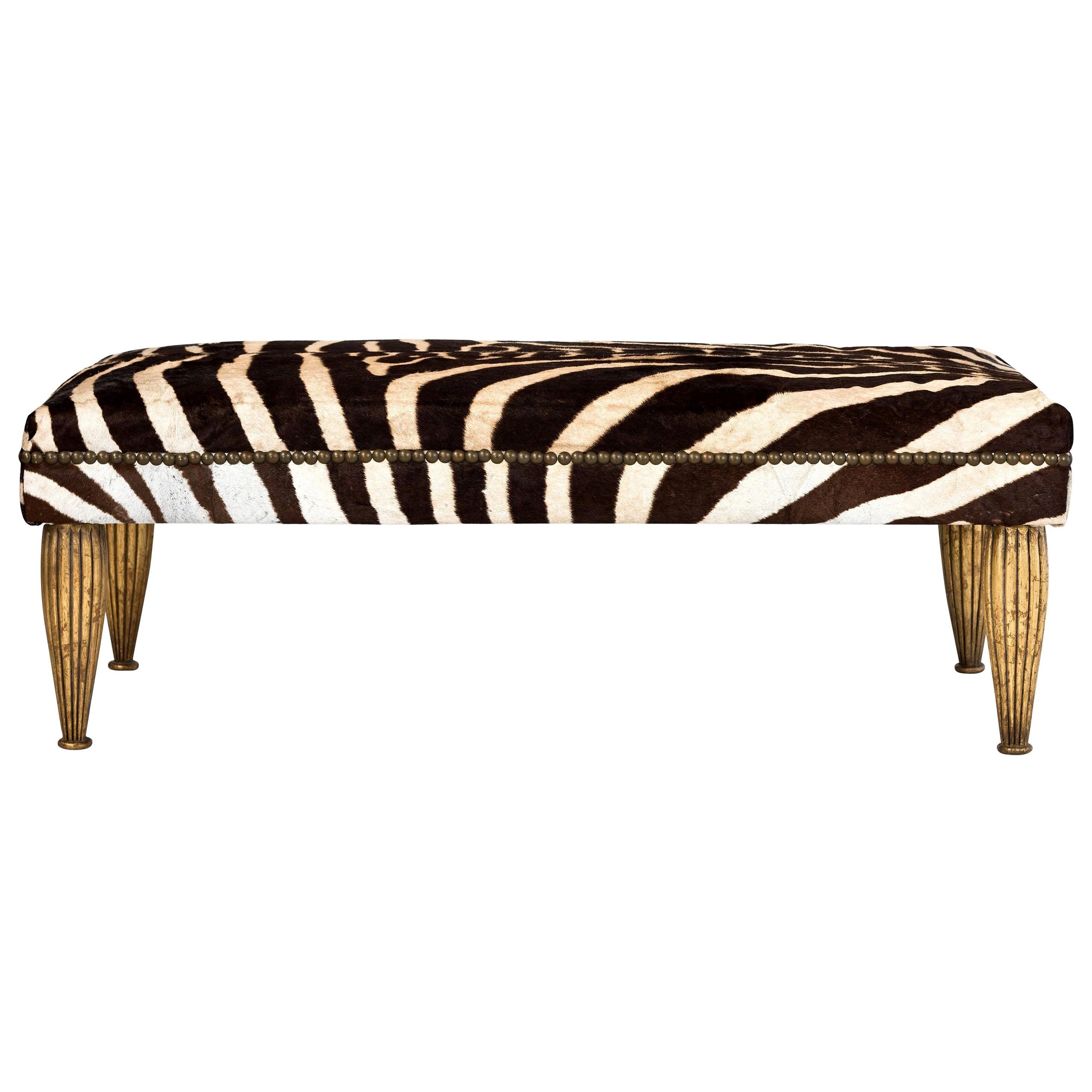 Zebra Bench with Gold Gilt Legs