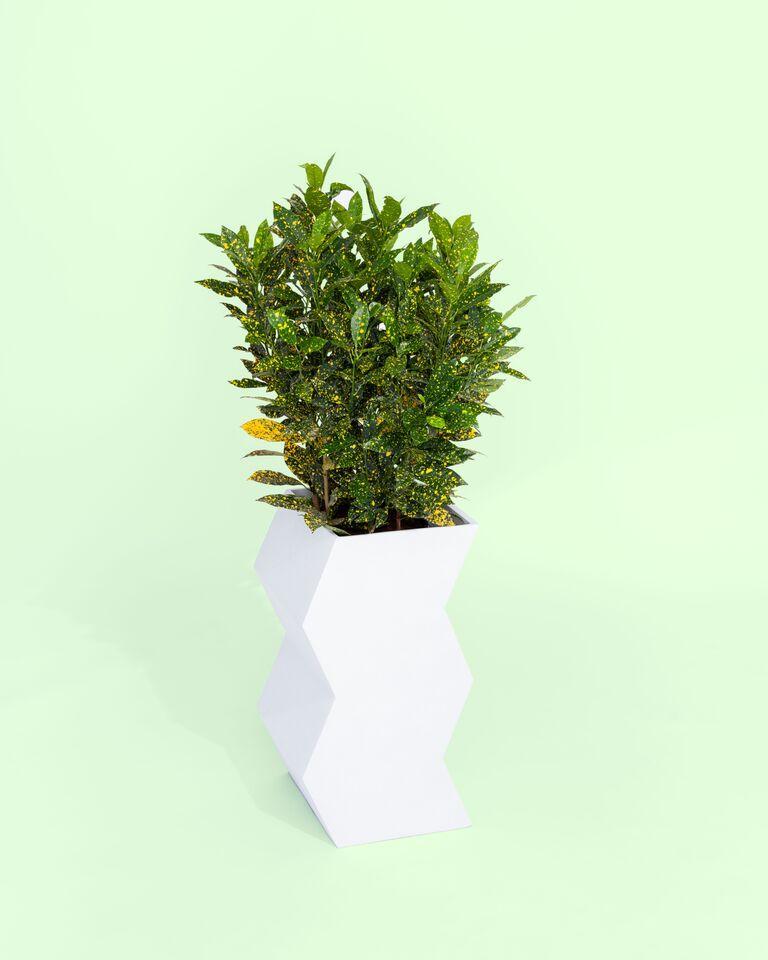 Vietnamese Zig Zag Planter by Pieces, Modern White Fiberglass Planter For Sale