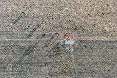 """Farmland Shadows"", Contemporary Landscape  Color Photograph, 40""x60"""